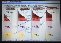 人口ピラミッド2