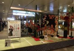 日本橋和文化8